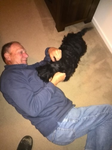 My dad always gets on the floor and plays with the dogs